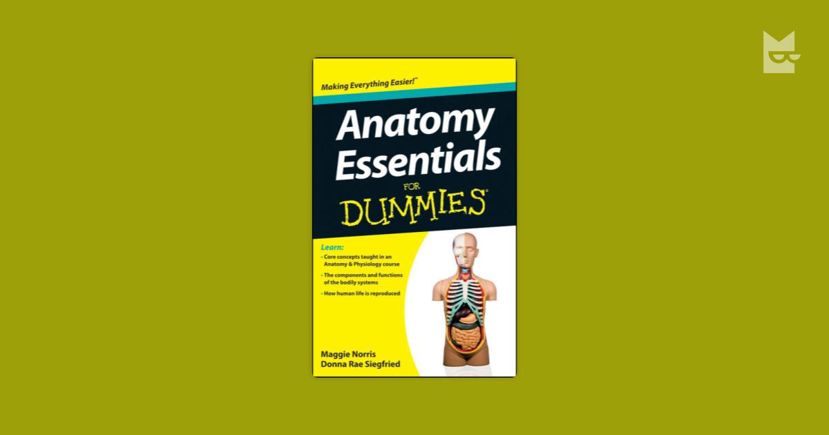 Anatomy Essentials For Dummies By Donna Rae Siegfried Maggie Norris